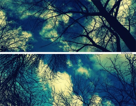 Sky_by_LSDsuicide